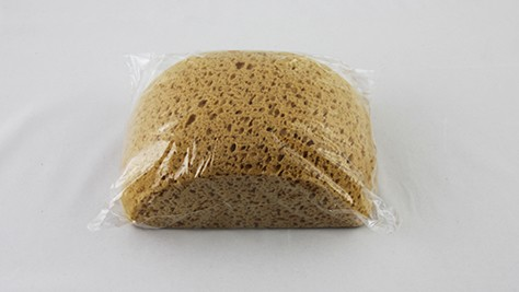 Sponge - Hydra